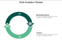 Web Analytics Review Ppt Powerpoint Presentation Styles Vector Cpb