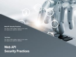 Web API Security Practices Ppt Powerpoint Presentation Pictures Infographics Cpb