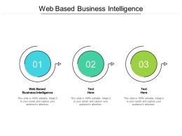 Web Based Business Intelligence Ppt Powerpoint Presentation Layouts Diagrams Cpb
