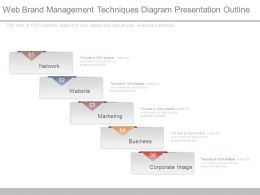 Web Brand Management Techniques Diagram Presentation Outline