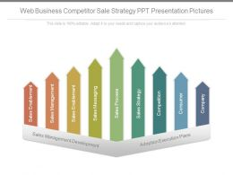 Web Business Competitor Sale Strategy Ppt Presentation Pictures
