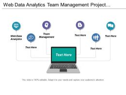 Web Data Analytics Team Management Project Planning Timeline Cpb