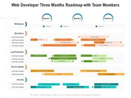 Web Developer Three Months Roadmap With Team Members