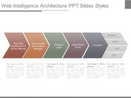 Web Intelligence Architecture Ppt Slides Styles