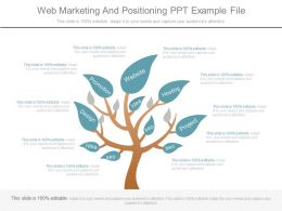 Web Marketing And Positioning Ppt Example File