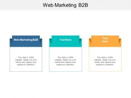 Web Marketing B2B Ppt Powerpoint Presentation Styles Backgrounds Cpb
