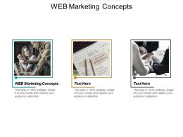 Web Marketing Concepts Ppt Powerpoint Presentation Show Good Cpb