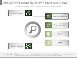 Web Marketing Experts Review Ppt Background Images