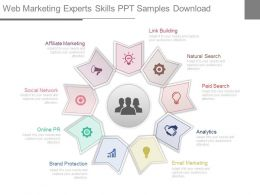 Web Marketing Experts Skills Ppt Samples Download