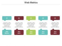 Web Metrics Ppt Powerpoint Presentation Gallery Vector Cpb