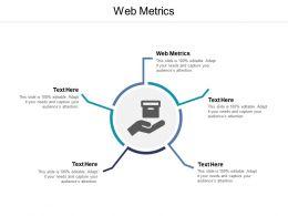 Web Metrics Ppt Powerpoint Presentation Summary Outline Cpb