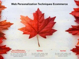 Web Personalization Techniques Ecommerce Ppt Powerpoint Presentation Infographics Format Cpb