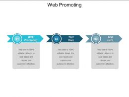 Web Promoting Ppt Powerpoint Presentation Portfolio Cpb