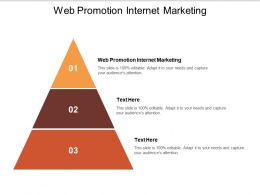 Web Promotion Internet Marketing Ppt Powerpoint Presentation Pictures Introduction Cpb