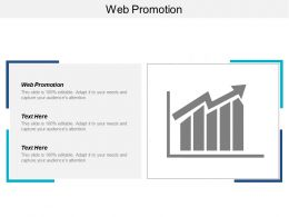 Web Promotion Ppt Powerpoint Presentation Infographic Template Guide Cpb
