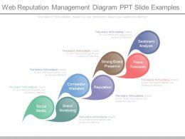 Web Reputation Management Diagram Ppt Slide Examples