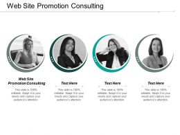 Web Site Promotion Consulting Ppt Powerpoint Presentation Pictures Ideas Cpb