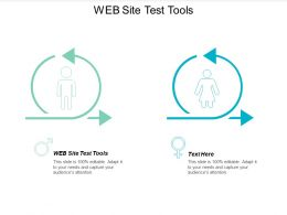Web Site Test Tools Ppt Powerpoint Presentation Icon Example File Cpb