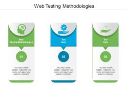 Web Testing Methodologies Ppt Powerpoint Presentation Icon Mockup Cpb