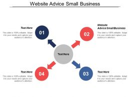 Website Advice Small Business Ppt Powerpoint Presentation Model Professional Cpb