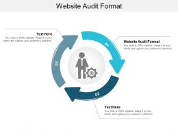 Website Audit Format Ppt Powerpoint Presentation Infographic Template Influencers Cpb