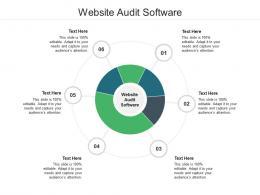 Website Audit Software Ppt Powerpoint Presentation Model Tips Cpb