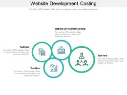 Website Development Costing Ppt Powerpoint Presentation Slides Design Ideas