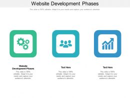 Website Development Phases Ppt Powerpoint Presentation Professional Files