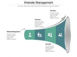 Website Management Ppt Powerpoint Presentation Summary Styles Cpb