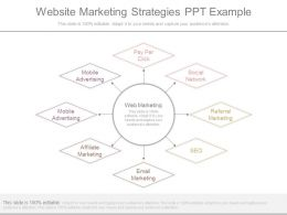 Website Marketing Strategies Ppt Example