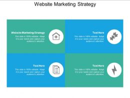 Website Marketing Strategy Ppt Powerpoint Presentation Summary Show Cpb