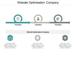 Website Optimisation Company Ppt Powerpoint Presentation Icon Portfolio Cpb