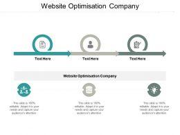 Website Optimisation Company Ppt Powerpoint Presentation Icon Portfolio Cpb
