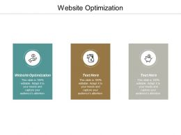 Website Optimization Ppt Powerpoint Presentation Infographic Template Format Ideas Cpb