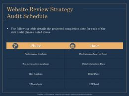 Website Review Strategy Audit Schedule Analysis Ppt File Elements