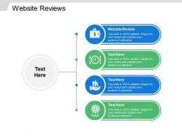 Website Reviews Ppt Powerpoint Presentation File Portrait Cpb
