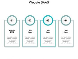 Website SAAS Ppt Powerpoint Presentation Styles Guidelines Cpb