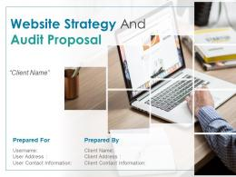 Website Strategy And Audit Proposal Powerpoint Presentation Slides