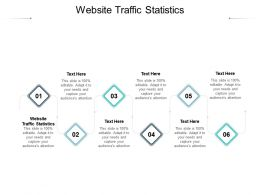 Website Traffic Statistics Ppt Powerpoint Presentation Infographic Template Introduction Cpb