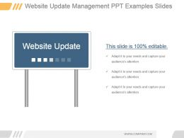 Website Update Management Ppt Examples Slides