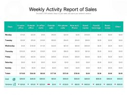 Weekly Activity Report Of Sales