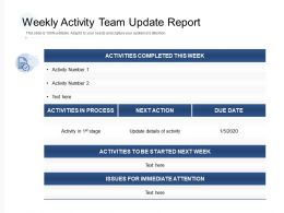 Weekly Activity Team Update Report