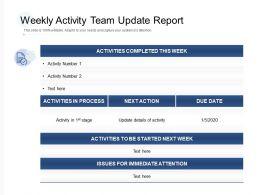 Weekly Activity Team Update Report