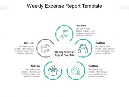 Weekly Expense Report Template Ppt Powerpoint Presentation Gallery Grid Cpb