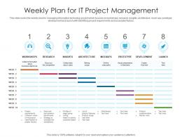 Weekly Plan For IT Project Management