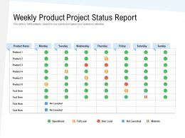 Weekly Product Project Status Report