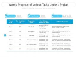 Weekly Progress Of Various Tasks Under A Project
