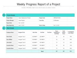 Weekly Progress Report Of A Project