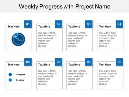 Weekly Progress With Project Name