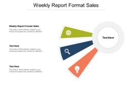 Weekly Report Format Sales Ppt Powerpoint Presentation Model Infographic Template Cpb